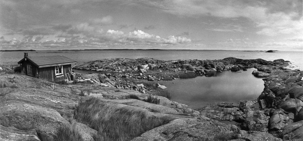 L'isola di Tove Jansson